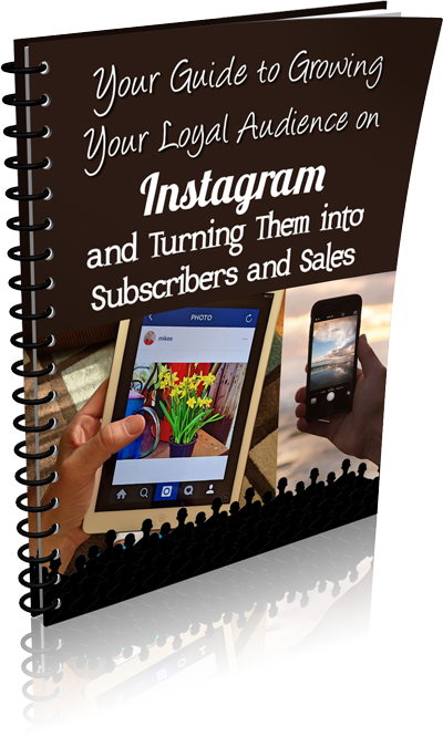 Guide to Growing Your Loyal Audience With Instagram