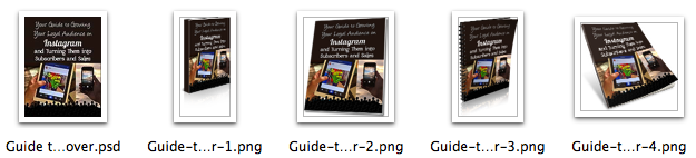 Guide to Growing Your Loyal Following With Instagram