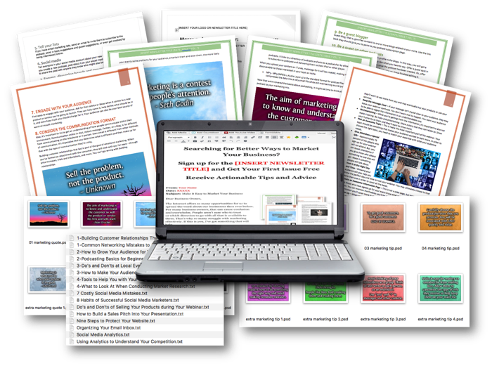 Marketing Niche Ready-to-Go Newsletters Package